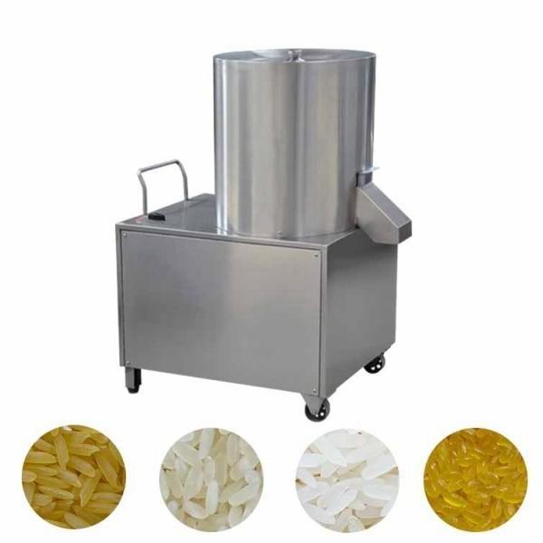 Industrial Vegetable & Fruit Multi Layer Hot Air Dryer