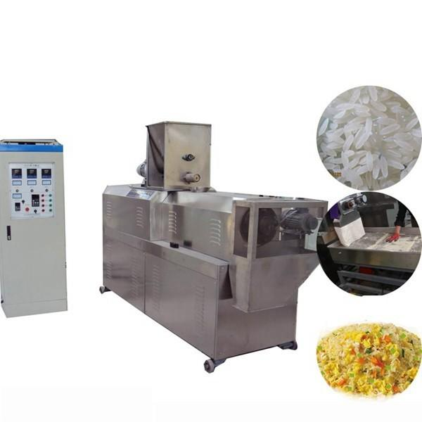 Twin Screw Extruder Artificial Fortified Rice Making Processing Machine