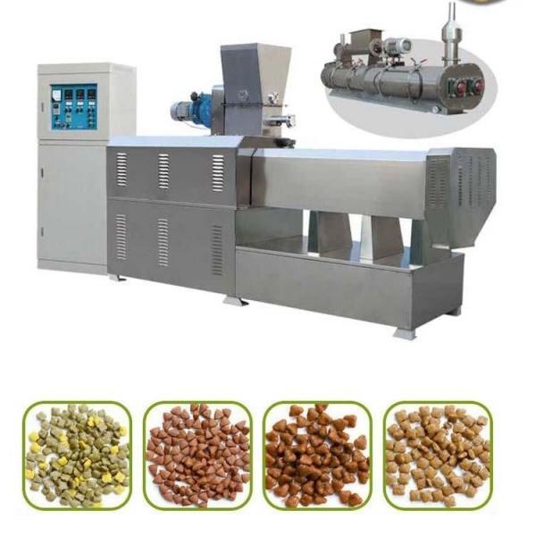 Twin Screw Artificial Rice Extruder Machine