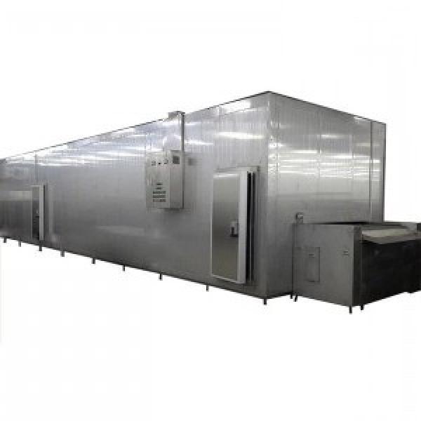 Animal Fish Feed Pet Dog Food Extruder Processing Making Machine