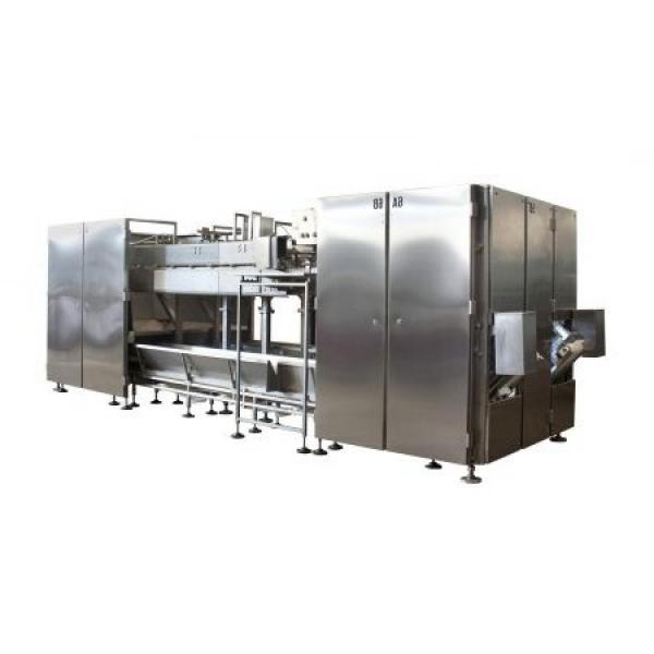 Animal Feed Production Line Pig Food Pellet Equipment Bird Feed Making Machine