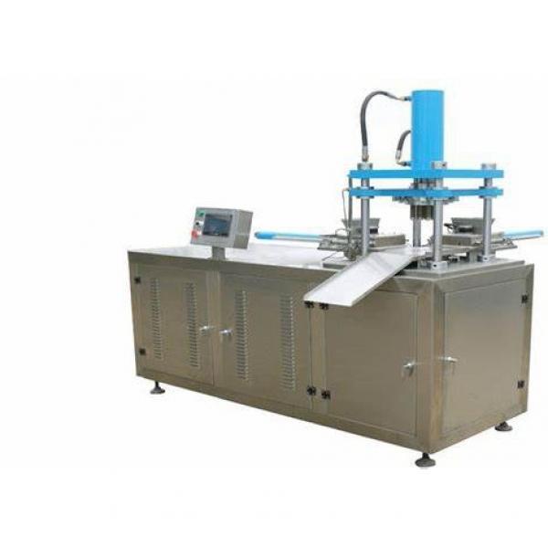 Modified Potato Starch Production Line