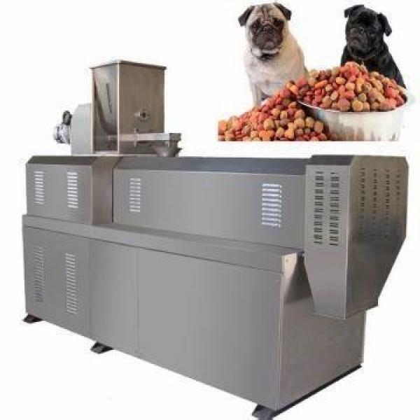 Ce Standard Full Automatic Modified Tapioca/Cassava Starch Production Line
