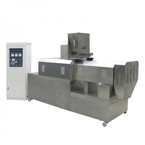 Automatic Bread Crumbs Processing Extruder Making Machine Production Line Double Screw Extruder Production Plant Equipment
