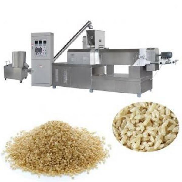 Double Screw Fried Puff Ball Crispy Bugle Chip Core Filled Maize Flour Small Corn Puff Food Snack Extruder Machine