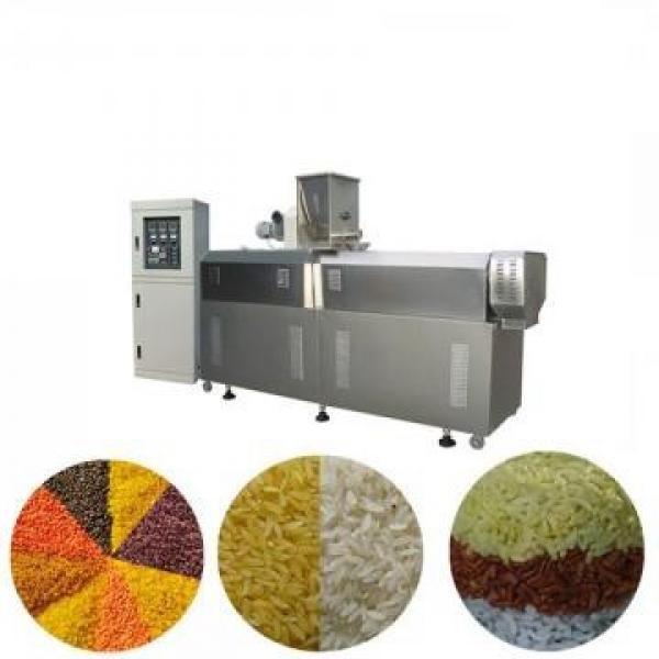 Jinan Saibainuo Breakfast Cereals Corn Flakes Extruder Machine
