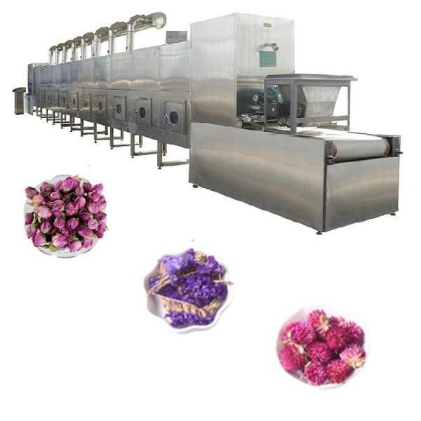 High Production Seafood, Meat, Poultry, Chicken Assembly Vacuum Skin Packaging Line