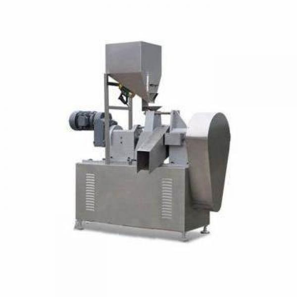 Electric Noodle Making Machine (GRT-RHH220C) Pasta Maker