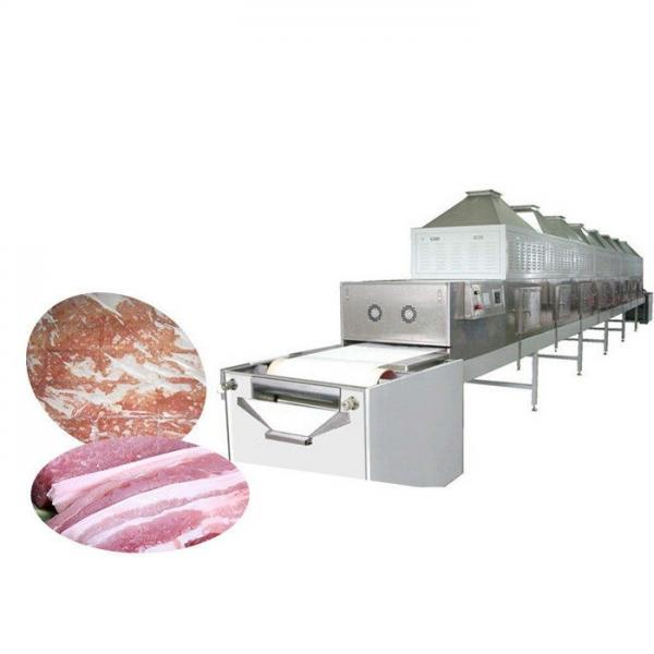Industrial food fruit avocado continuous tunnel microwave dehydrator sterilizer dryer drying machine