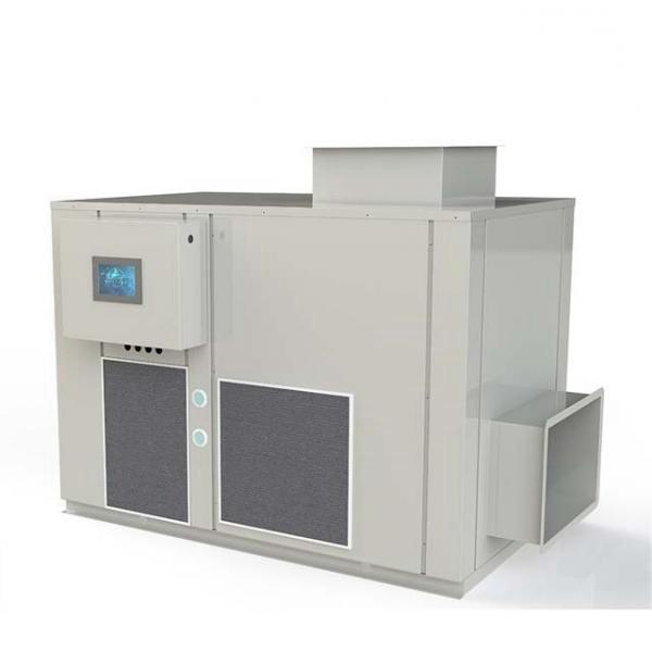 sheeon company microwave dryer/microwave food dehydrator/Microwave drying machine for fruit