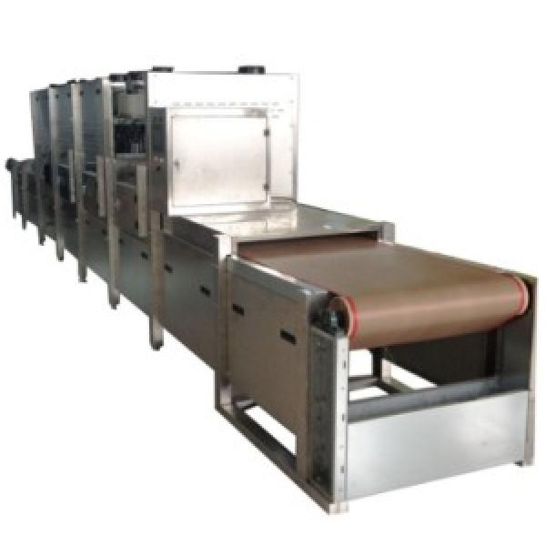 The newest dehydration microwave dryer machine with fair price