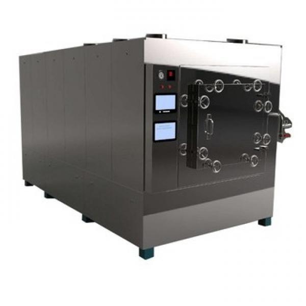 Pregelatinized Modified Starch Processing Machine